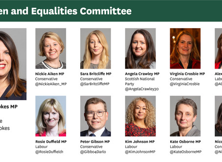 On the importance of representation on the Government's Women and Equalities Committee