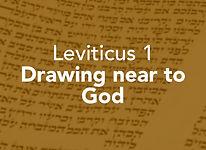 Leviticus_pods_Vayikra 1.jpg