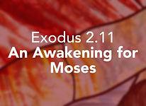 Exodus_pods Shemot 2.jpg