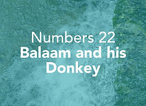Numbers_pods_Balak_1.jpg