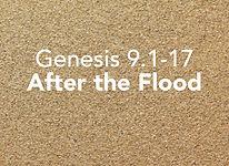 Genesis_pods_Noach 3.jpg