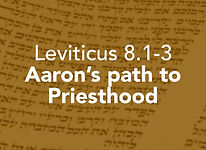 Leviticus_pods_Tzav 3.jpg