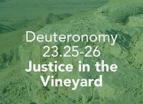 Deuteronomy_pods_Ki Teitzei_1.jpg