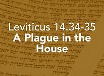 Leviticus_pods_Metzora 1.jpg