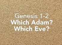 Genesis_pods_Bereshit 1.jpg