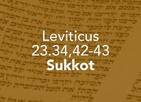 Leviticus_pods_Emor 2.jpg
