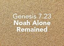 Genesis_pods_Noach 2.jpg