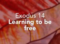 Exodus_pods Beshalach 1.jpg