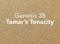 Genesis_pods_Vayishev_3.jpg
