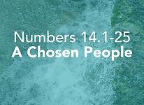 Numbers_pods_Shelach Lecha_3.jpg