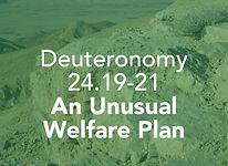 Deuteronomy_pods_Ki Teitzei_3.jpg