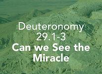 Deuteronomy_pods_Ki Tavo_3.jpg