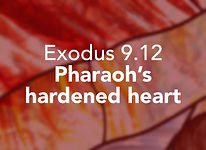 Exodus_pods Vaeira 3.jpg