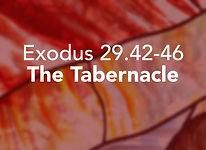 Exodus_pods Tetzaveh 3.jpg