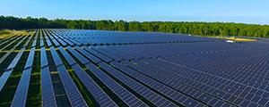 solar panels ecoplexus thumb.png