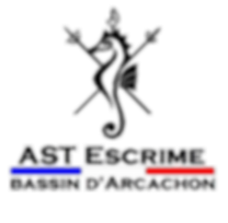 logo%20ast_edited.png