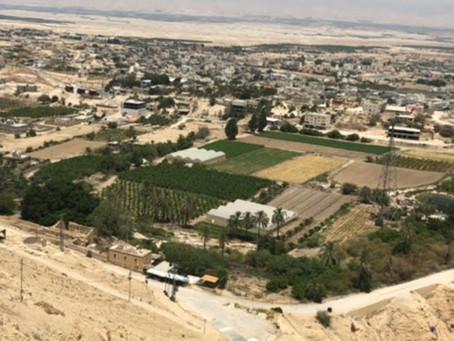 1.35 Million Trees Planted