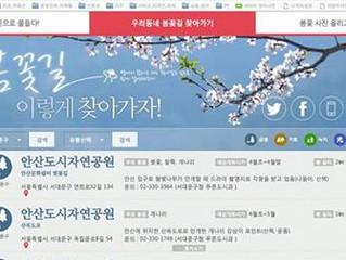 서울 봄꽃으로 물들다