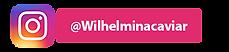 WilhelminaCaviarIGVideo.png