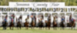 HorseRacing-Banner.jpg