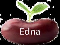 edna button copy.png
