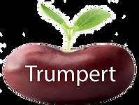 Trumpet bean button copy.png