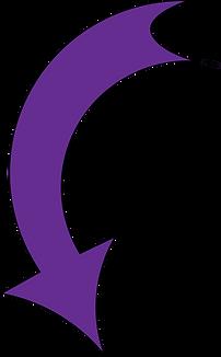 purple arrow copy.png