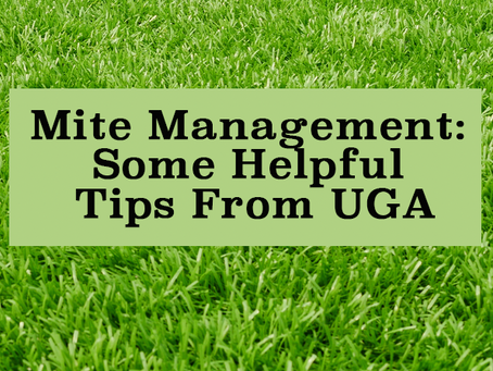 Mite Management: Some helpful tips from UGA