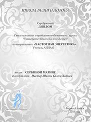 серебрянный диплом Марины.jpg