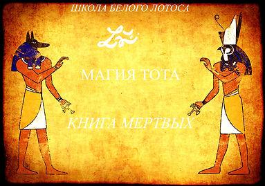 МАГИЯ ТОТА ТЕКСТ.jpg