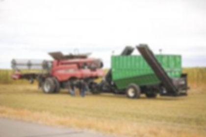 harvest process hemp 9-19.jpg