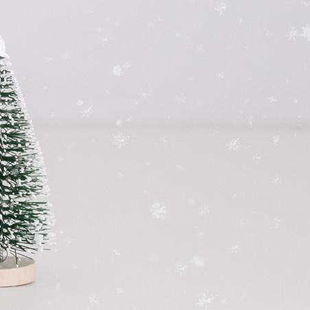 Twelve Days of Christmas Kit