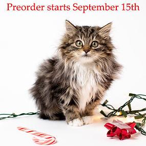12 Days of Cat-mas.jpg