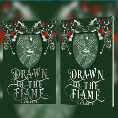 Drawn to the Flame
