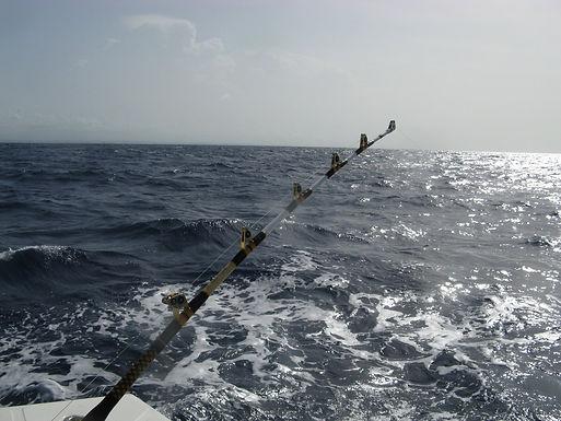Fishing charters in San Juan, Puerto Rico