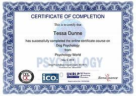 dog psychology certificate image.jpg