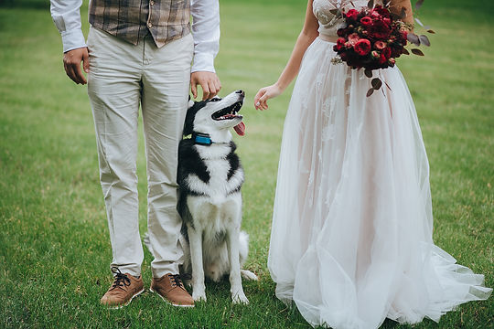 have you dog at your wedding