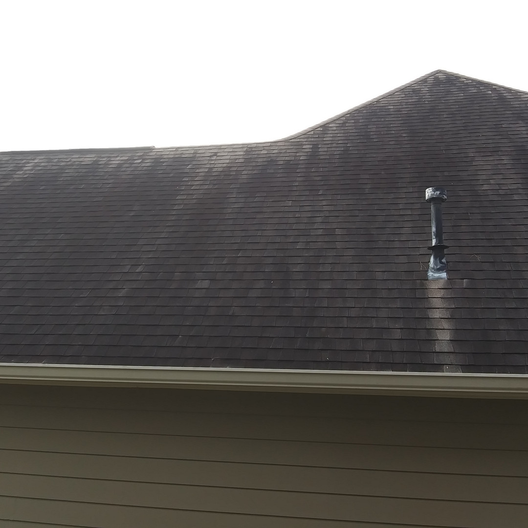 Soft Wash Roof Cleaning before