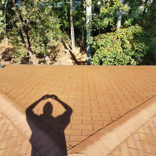 Roof Cleaning Marietta Georgia