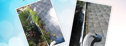 gutter cleaning before and after canton