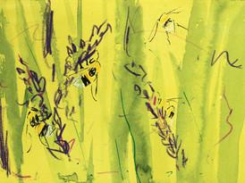White-tailed bumlebee & Lavender 3