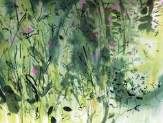 Trymwood meadow 2