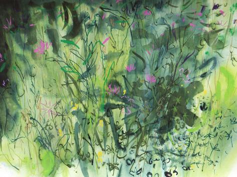 Trymwood meadow 3