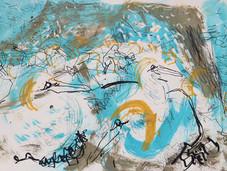 Colony 6 - Gannets, Bass rock