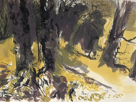 Spring woodland, Granham hill