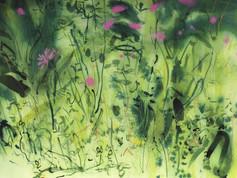 Trymwood meadow 4