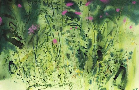 Trymwood meadow 4.jpg