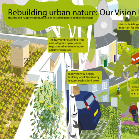 Living Landscapes - Urban Nature