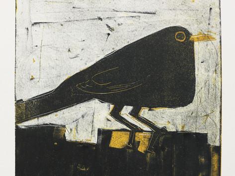 Blackbird at dusk