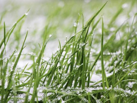 Los mejores equipos para este invierno: precios pequeños para trabajar en grande